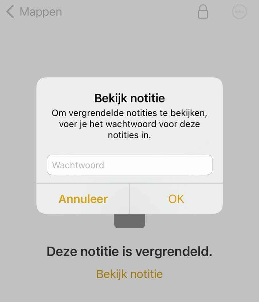 password op foto instellen iphone of ipad